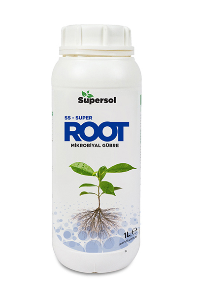 SS-Super_Root